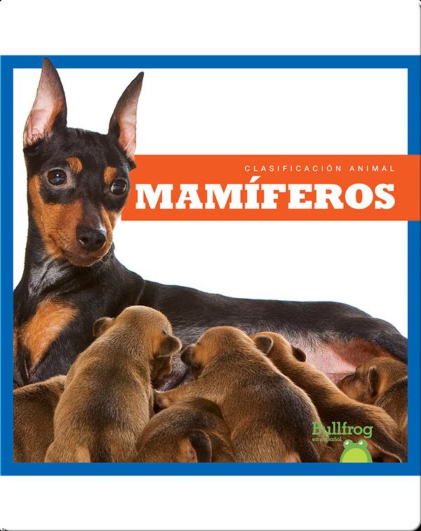 Clasificación Animal: Mamíferos