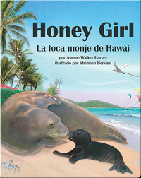 Honey Girl: La foca monje de Hawái