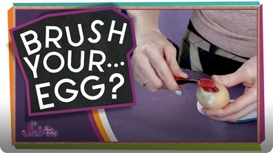 SciShow Kids: Remember to Brush Your... Egg?