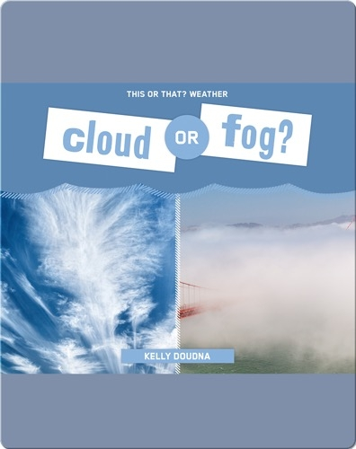 Cloud or Fog?