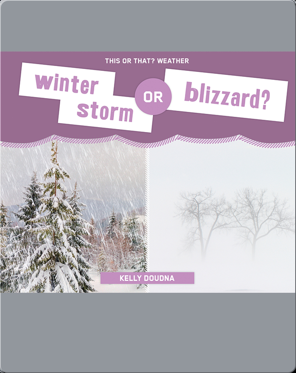 Winter Storm or Blizzard?