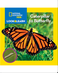 National Geographic Kids Look and Learn: Caterpillar to Butterfly