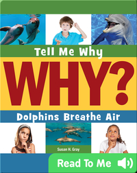 Dolphins Breathe Air