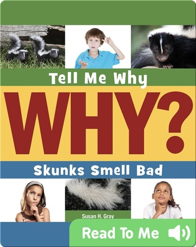 Skunks Smell Bad