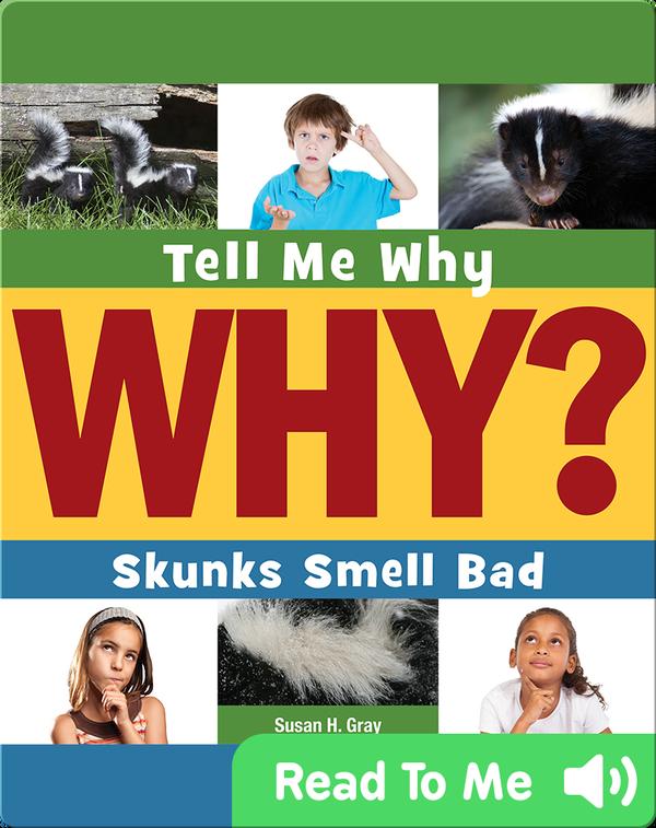 Skunks Smell Bad
