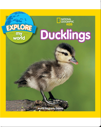 Explore My World Ducklings