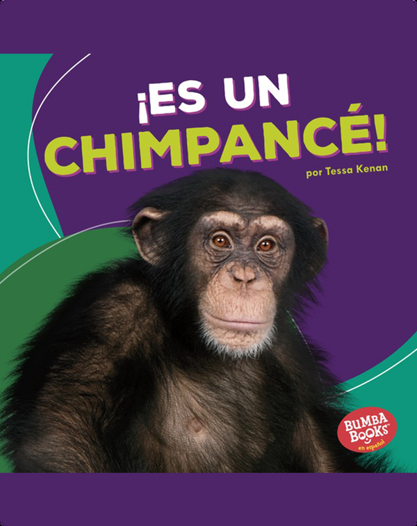 ¡Es un chimpancé! (It's a Chimpanzee!)