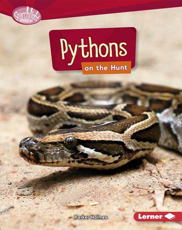Pythons on the Hunt