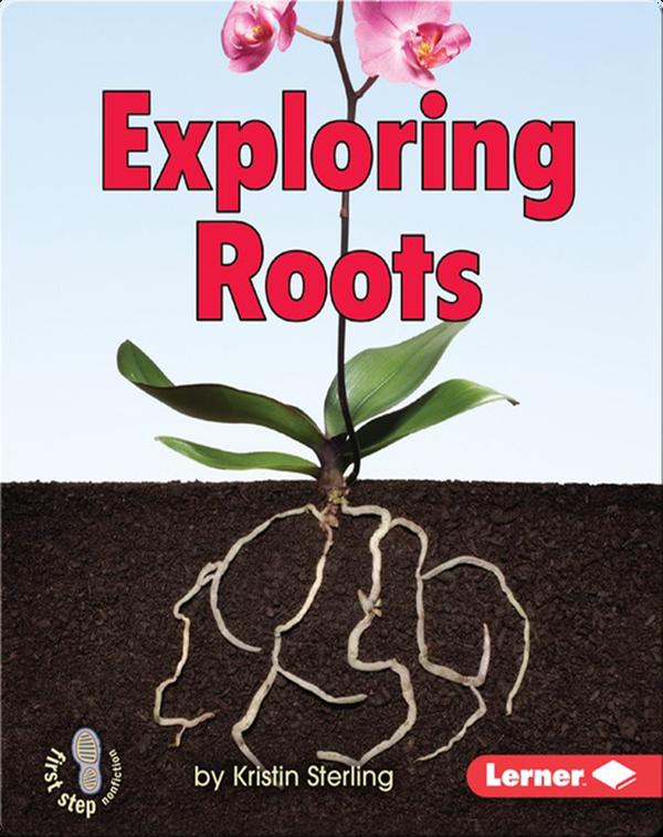 Exploring Roots