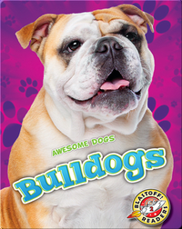 Awesome Dogs: Bulldogs