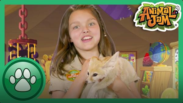 Cami Meets a Fennec Fox