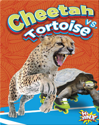 Cheetah vs. Tortoise