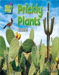 Prickly Plants: Stuck!