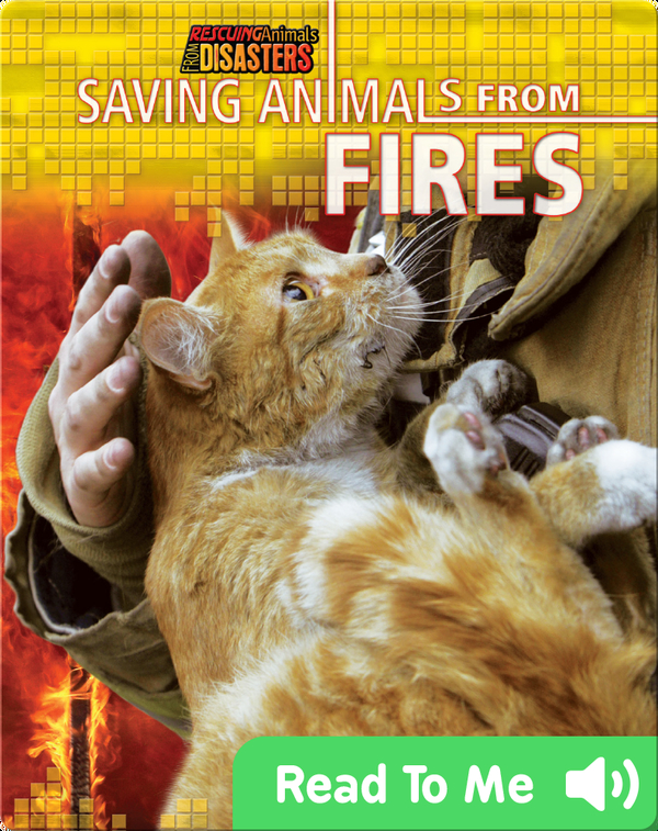 Saving Animals from Fires