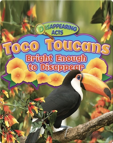 Toco Toucans: Bright Enough to Disappear