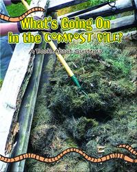 What's Going On In The Compost Pile? A Book About Systems
