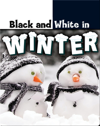 Black and White in Winter