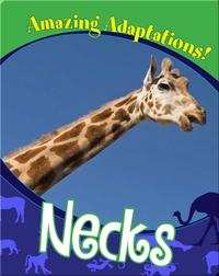 Necks