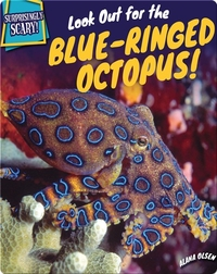 Look Out for the Blue-Ringed Octopus!