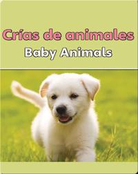 Crias De Animales  (Baby Animals)