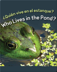 Quien Vive En El Estanque?  (Who Lives In The Pond?)