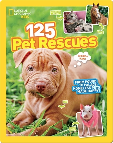 125 Pet Rescues: From Pound to Palace