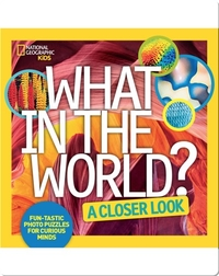 What in the World: A Closer Look