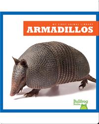 Armadillos
