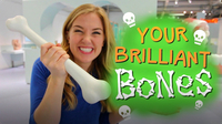 Your Brilliant Bones!