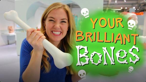 Your Brilliant Bones!