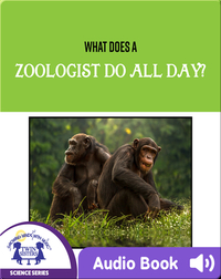 What Does A Zoologist Do All Day?