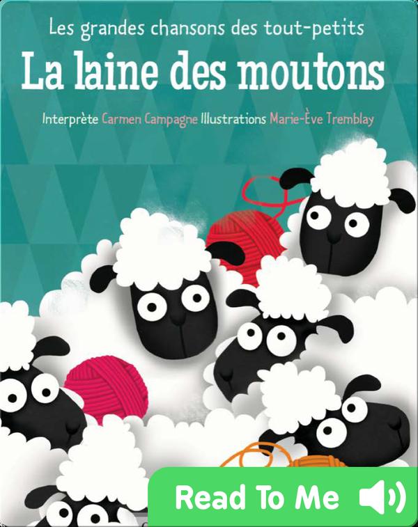 La laine des moutons