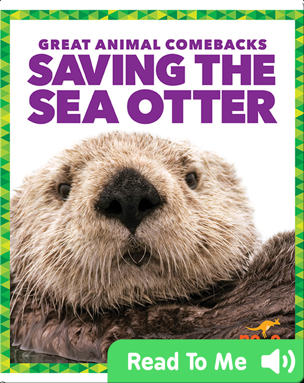 Saving the Sea Otter
