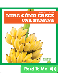 Mira cómo crece una banana (Watch a Banana Grow)