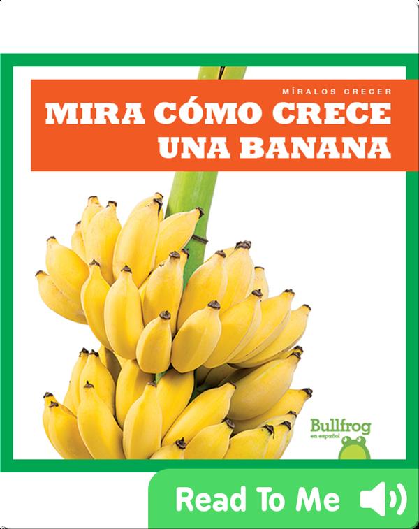 Mira cómo crece una banana (Watch a Banana Grow)
