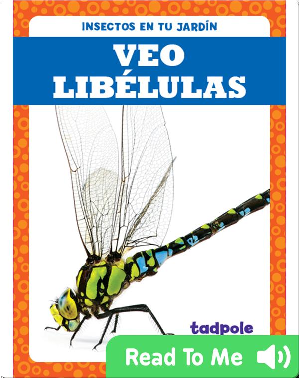 Veo libélulas (I See Dragonflies)