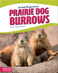 Animal Engineers: Prairie Dog Burrows