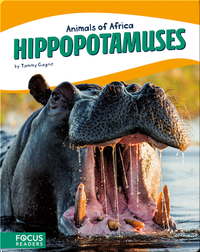 Animals of Africa: Hippopotamuses