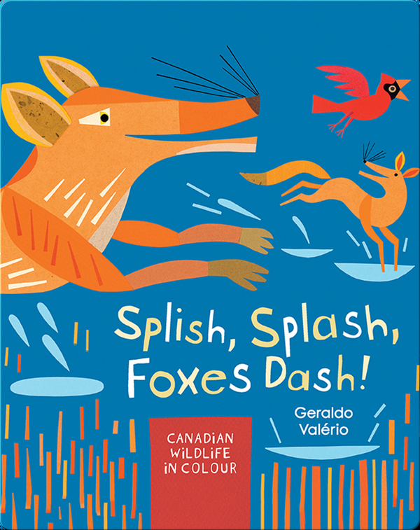Splish, Splash, Foxes Dash!: Canadian Wildlife in Colour