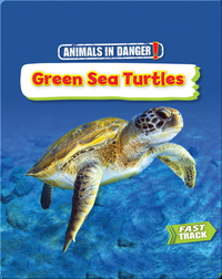 Animals in Danger: Green Sea Turtles