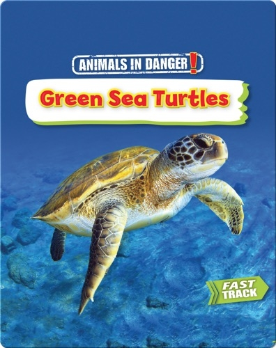 Animals in Danger: Green Sea Turtles