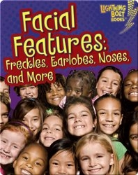 Facial Features: Freckles, Earlobes, Noses, and More
