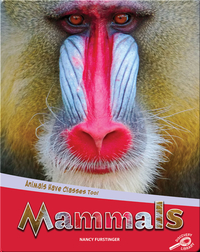 Animals Have Classes Too!: Mammals