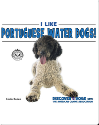 I Like Portugese Water Dogs!