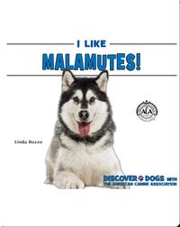 I Like Malamutes!