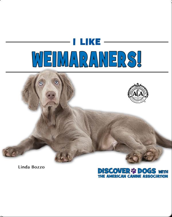 I Like Weimaraners!