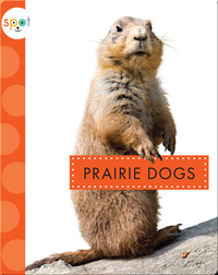 Backyard Animals: Prairie Dogs