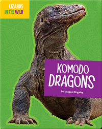 Lizards In The Wild: Komodo Dragons