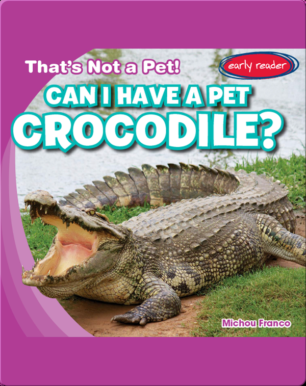 Can I Have a Pet Crocodile?