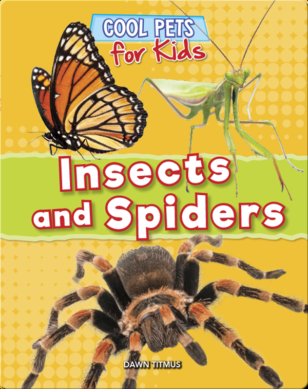 Cool Pets for Kids: Insects and Spiders